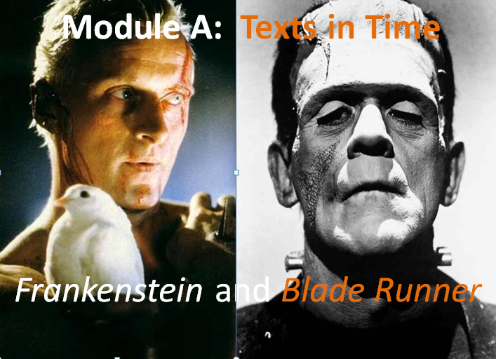 Frankenstein and Blade Runner Comparative Analysis
